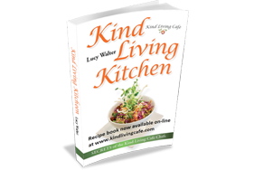 Kind Living Kitchen book